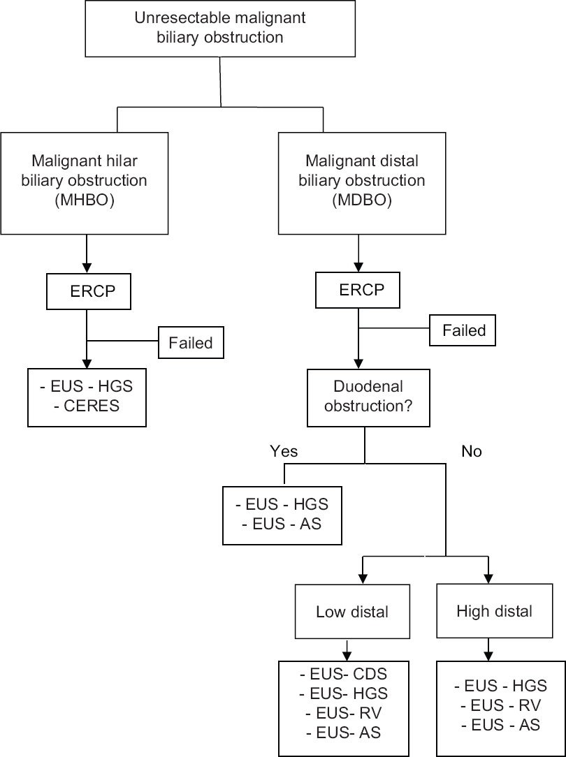Figure 2: Proposed algorithm for EUS-BD in unresectable malignant biliary obstruction. AS: Anterograde stenting; CDS: Choledochoduodenostomy; EUS-BD: EUS-guided biliary drainage; CERES: Combined ERCP and EUS.BD; HGS: Hepaticogastrostomy; RV: Rendezvous procedure